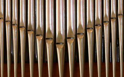 Drei Kirchenmusikerinnen stellen sich vor